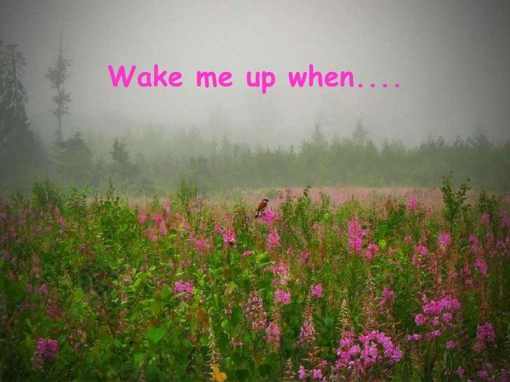 Wake me up when....