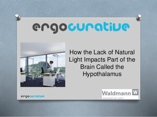 How the Lack of Natural Light Impacts Part of the Brain Called the Hypothalamus