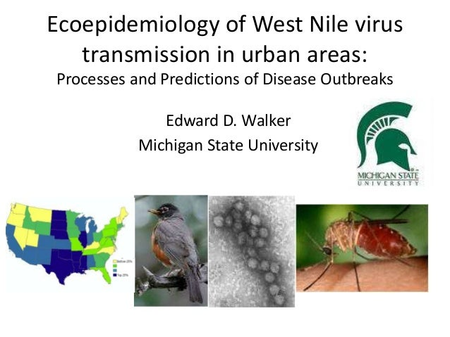 Ecoepidemiology of West Nile virus transmission in urban areas: Processes and Predictions of Disease Outbreaks Edward D. W...