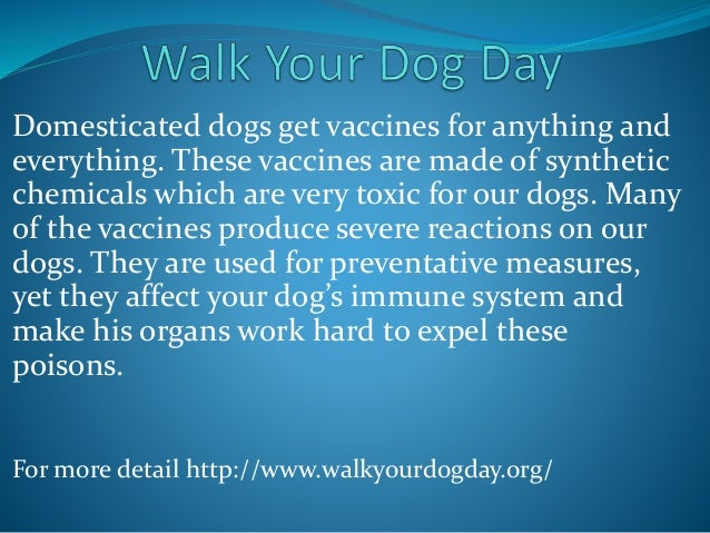 Domesticated dogs get vaccines for anything and everything. These vaccines are made of synthetic chemicals which are very ...