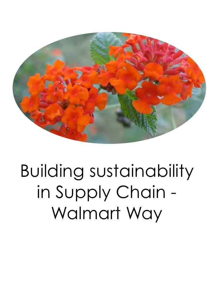 Building sustainability  in Supply Chain -    Walmart Way