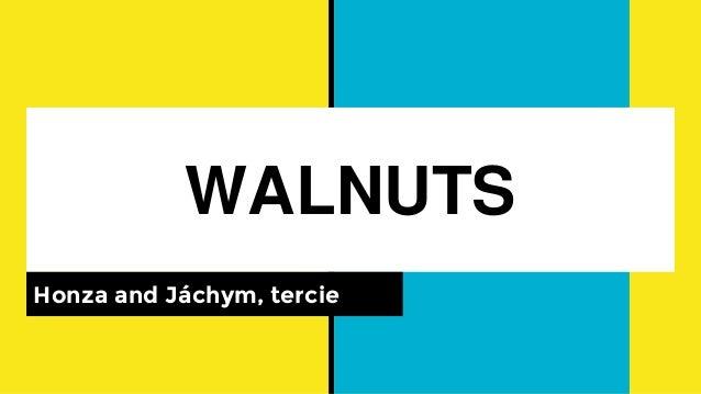 WALNUTS Honza and Jáchym, tercie