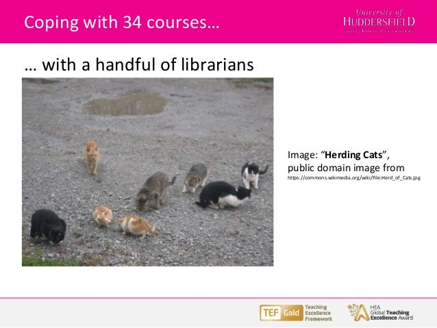 """Coping with 34 courses… … with a handful of librarians Image: """"Herding Cats"""", public domain image from https://commons.wik..."""