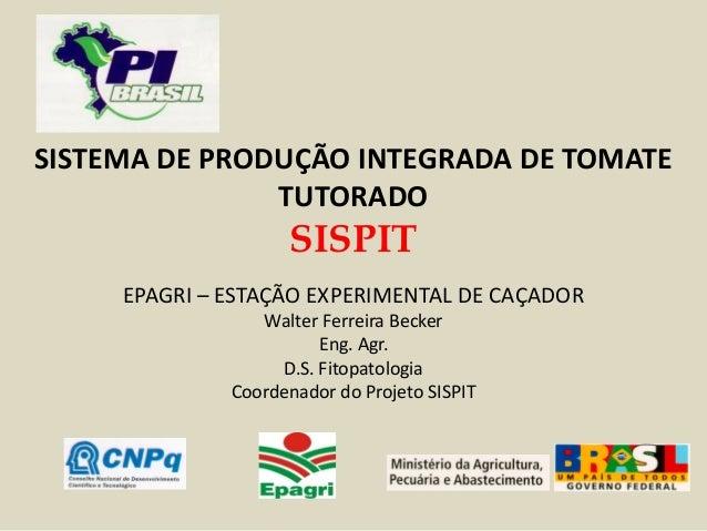 SISTEMA DE PRODUÇÃO INTEGRADA DE TOMATE TUTORADO SISPIT EPAGRI – ESTAÇÃO EXPERIMENTAL DE CAÇADOR Walter Ferreira Becker En...