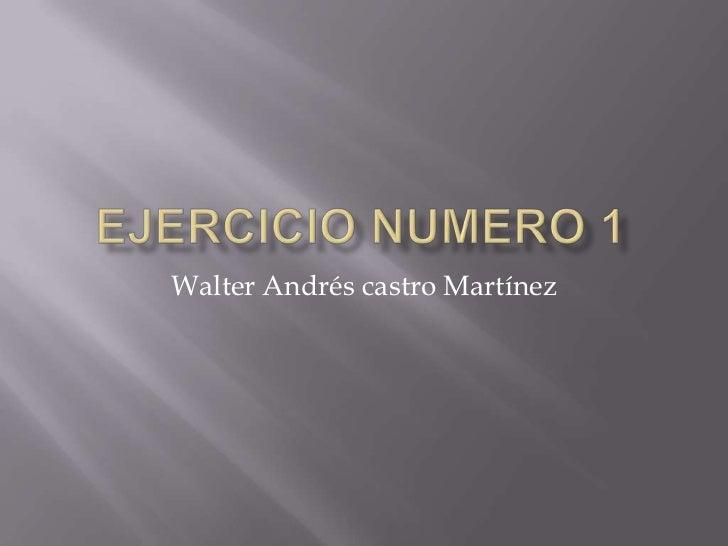 Walter Andrés castro Martínez
