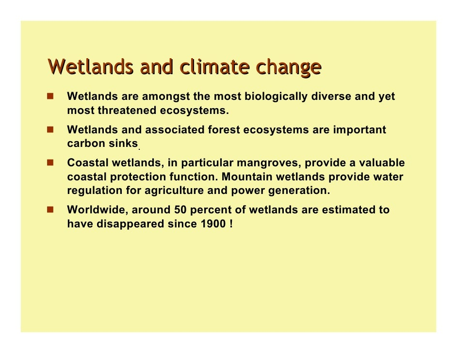 Global Change and the Function and Distribution of Wetlands -