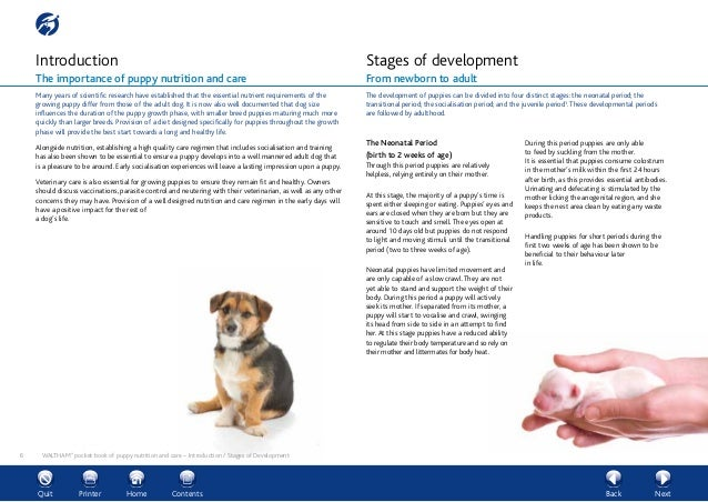 waltham pocket book of puppy nutrition and care