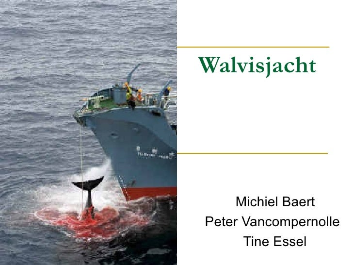 Walvisjacht Michiel Baert  Peter Vancompernolle Tine Essel