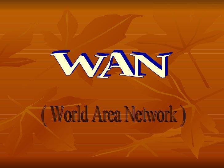 WAN ( World Area Network )
