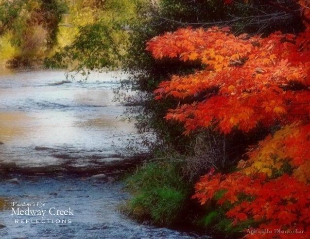 1 Medway Creek r e f l e c t i o n s Wanderer's Eye Aniruddha Dhamorikar