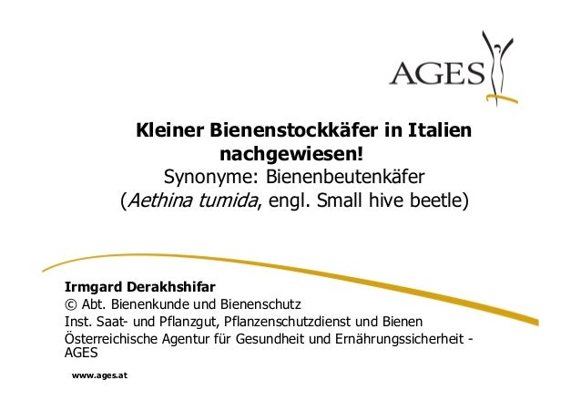 www.ages.at  Kleiner Bienenstockkäfer in Italien  nachgewiesen!  Synonyme: Bienenbeutenkäfer  (Aethina tumida, engl. Small...