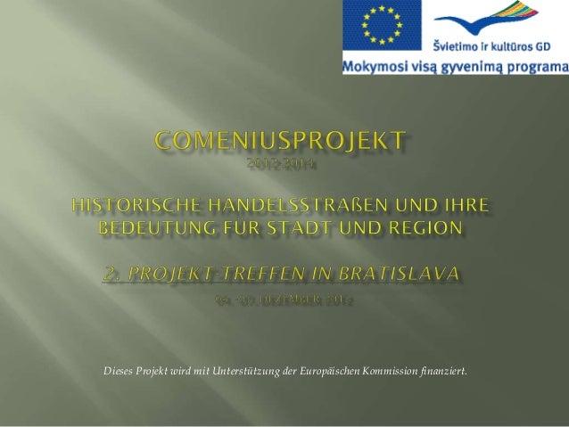 Dieses Projekt wird mit Unterstützung der Europäischen Kommission finanziert.