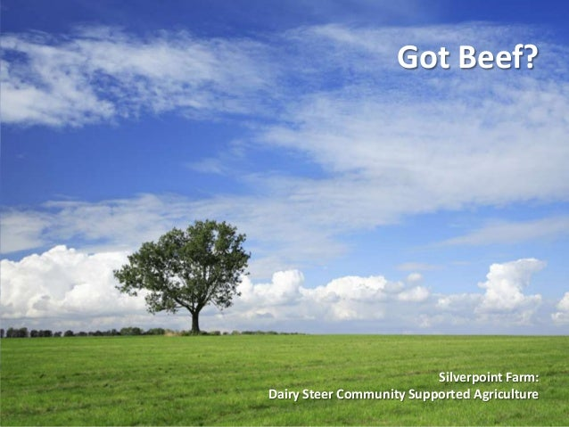 Got Beef?                          Silverpoint Farm:Dairy Steer Community Supported Agriculture