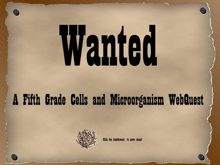 <ul><li>Wanted </li></ul><ul><li>A Fifth Grade Cells and Microorganism WebQuest </li></ul>Click the tumbleweed  to move ah...