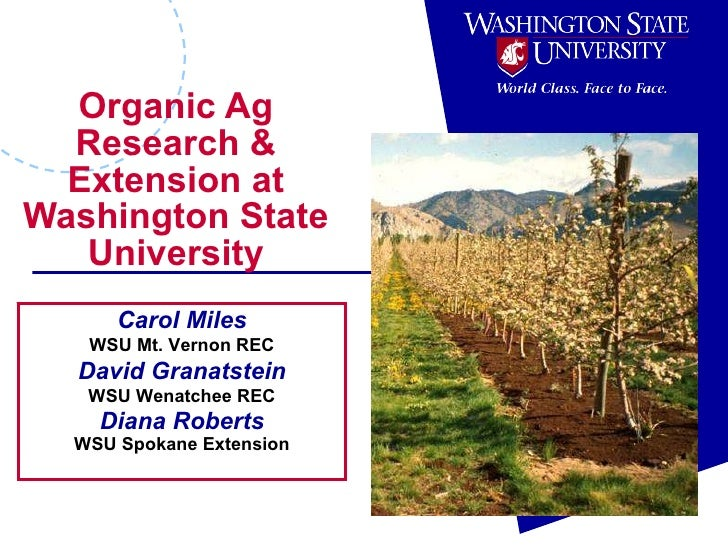 Organic Ag Research & Extension at Washington State University Carol Miles WSU Mt. Vernon REC David Granatstein WSU Wenatc...