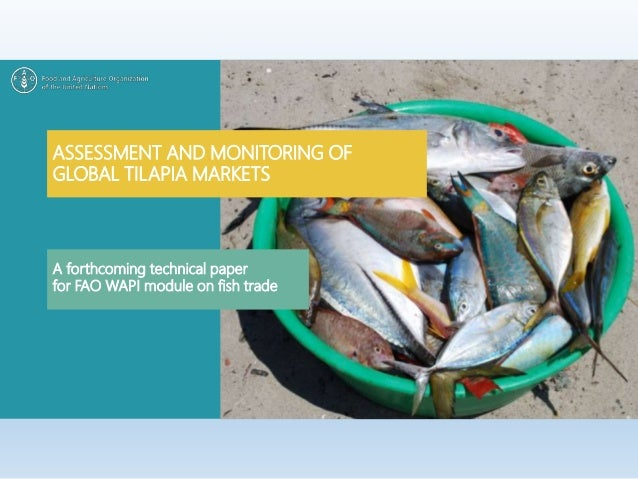 ASSESSMENT AND MONITORING OF GLOBAL TILAPIA MARKETS A forthcoming technical paper for FAO WAPI module on fish trade