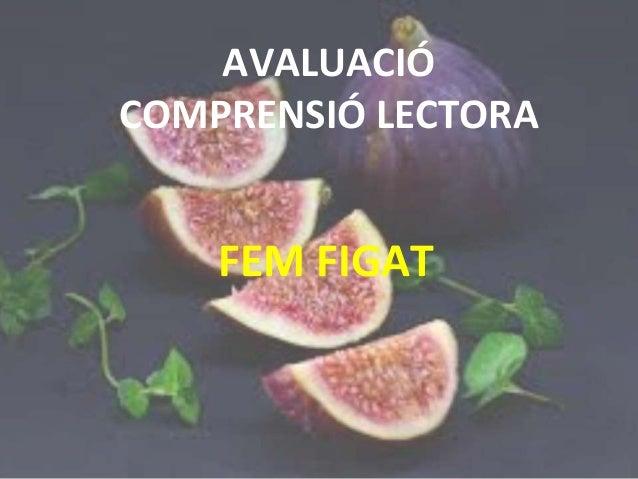 AVALUACIÓ COMPRENSIÓ LECTORA FEM FIGAT