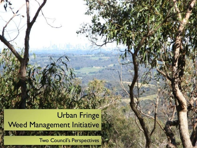 Urban Fringe Weed Management Initiative Initiative  Two Council's Perspectives