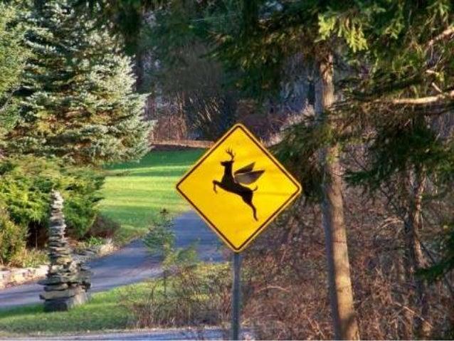 Warning! (v.m.)