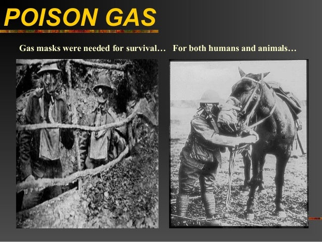 POISON GAS Gas masks were needed for survival… For both humans and animals…