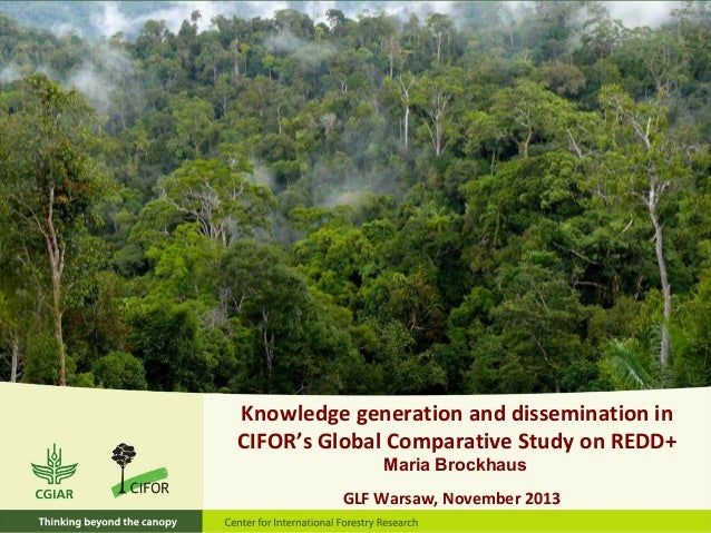 Knowledge generation and dissemination in CIFOR's Global Comparative Study on REDD+ Maria Brockhaus GLF Warsaw, November 2...