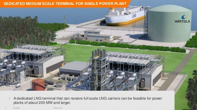 Mini Lng Plant : Determining the viability of a small scale lng project