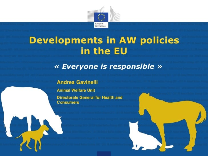 Developments in AW policies        in the EU    « Everyone is responsible »     Andrea Gavinelli     Animal Welfare Unit  ...