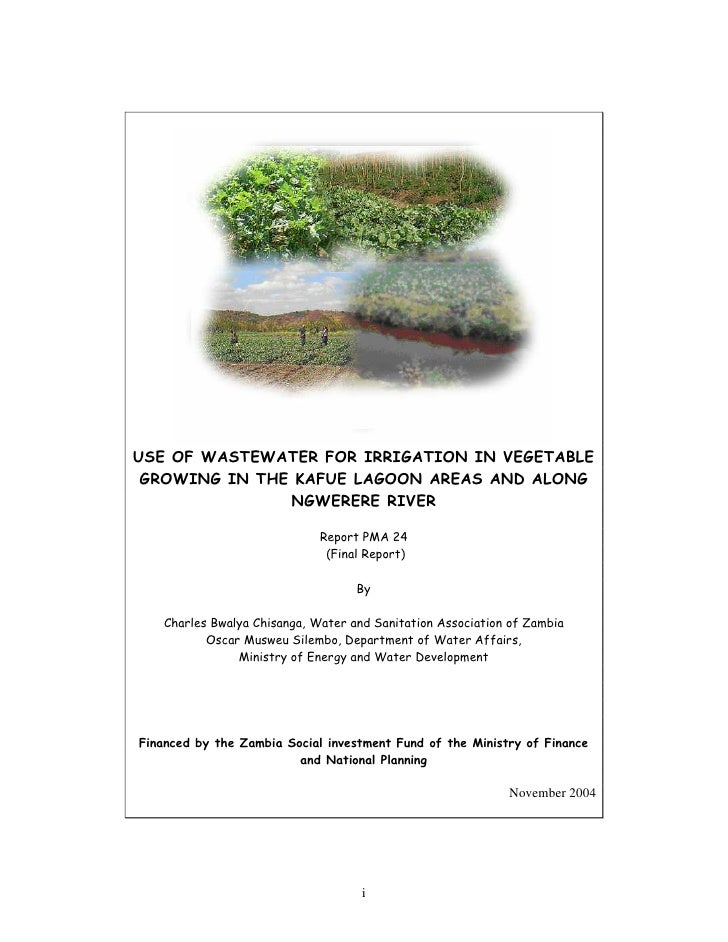 USE OF WASTEWATER FOR IRRIGATION IN VEGETABLE GROWING IN THE KAFUE LAGOON AREAS AND ALONG               NGWERERE RIVER    ...
