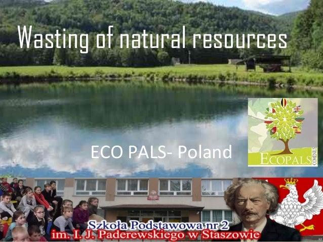 Wasting of natural resources  ECO PALS- Poland