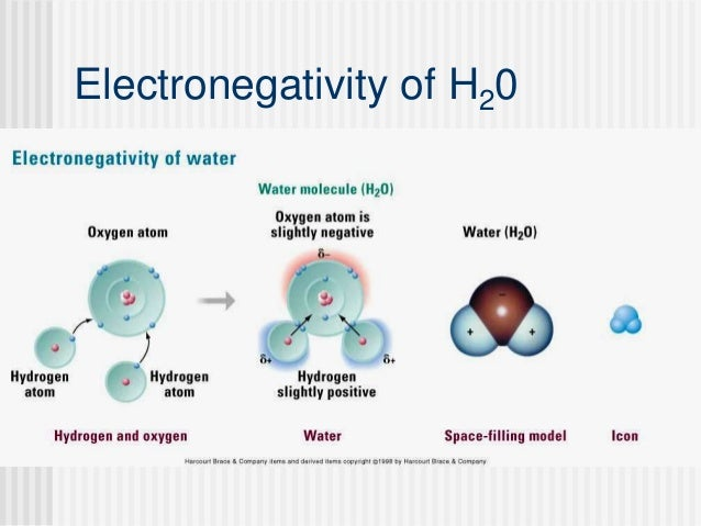 ap biology the properties of water essay Ap biology fall essay review select three properties of water and c discuss how human activity has an impact on the water cycle ap biology 1 fall essay.