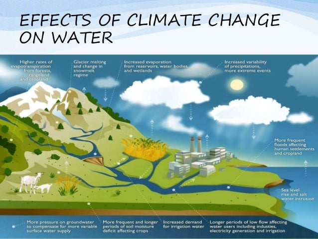 the importance of saving water In addition to saving money on your utility bill, water conservation helps prevent water pollution in nearby lakes, rivers, and local watersheds conserving water also prevents greenhouse.