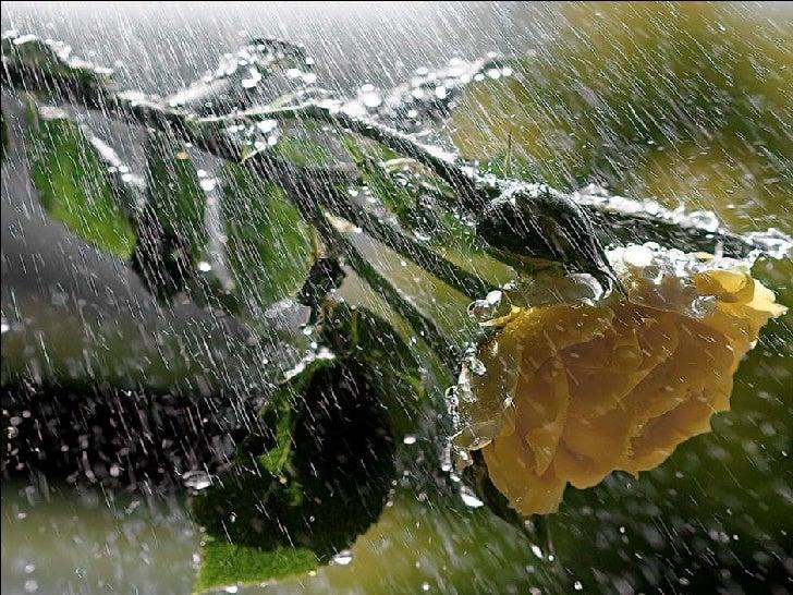 Water 20073 Slide 2