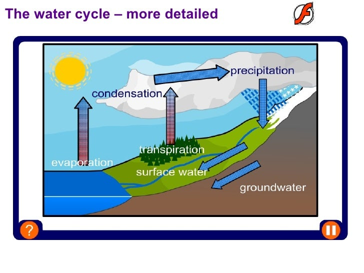 Water Cycle Powerpoint 8