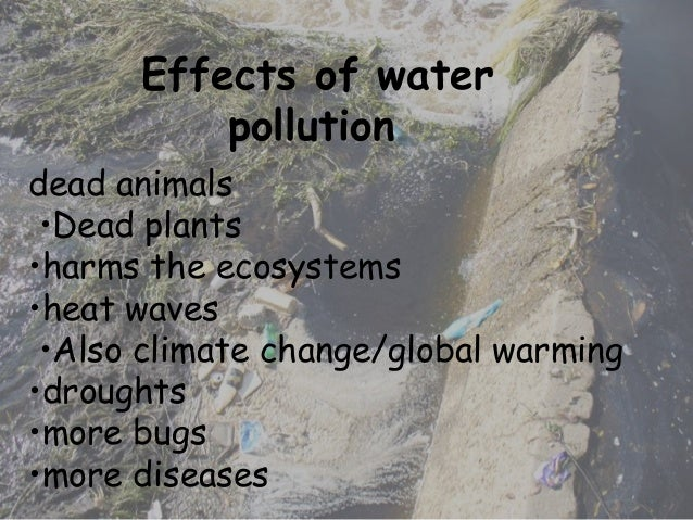 Global Warming Effects and Causes: A Top 10 List