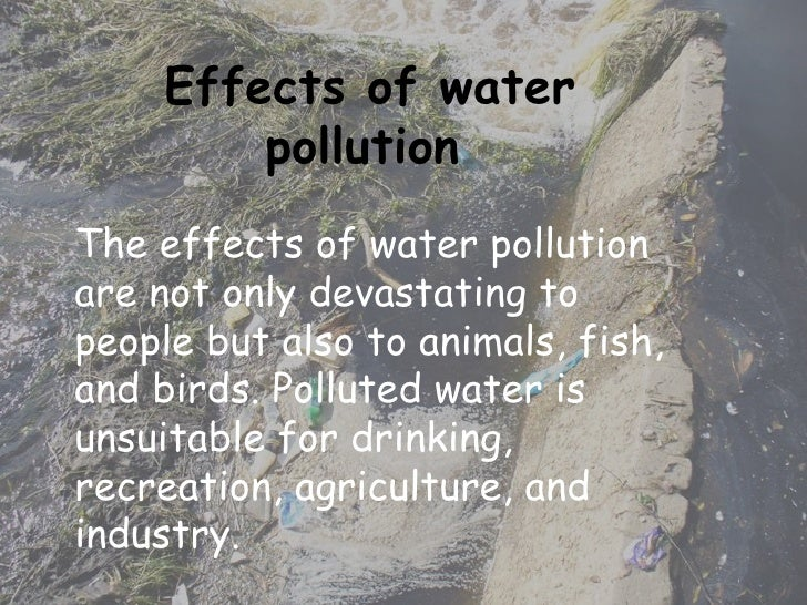 Cause and effects of water pollution