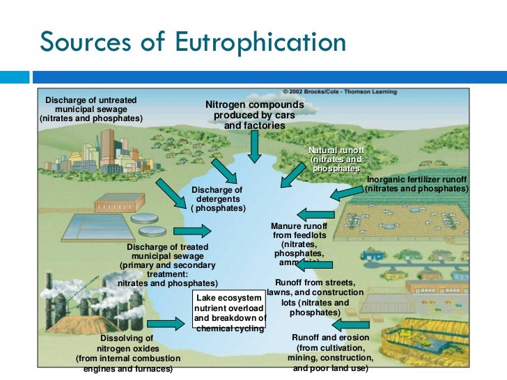 """an ecosystems disturbance by a pollutant When we add light to the environment, that has the potential to disrupt habitat,  just like running a bulldozer over the landscape can"""" — chad moore, fo."""