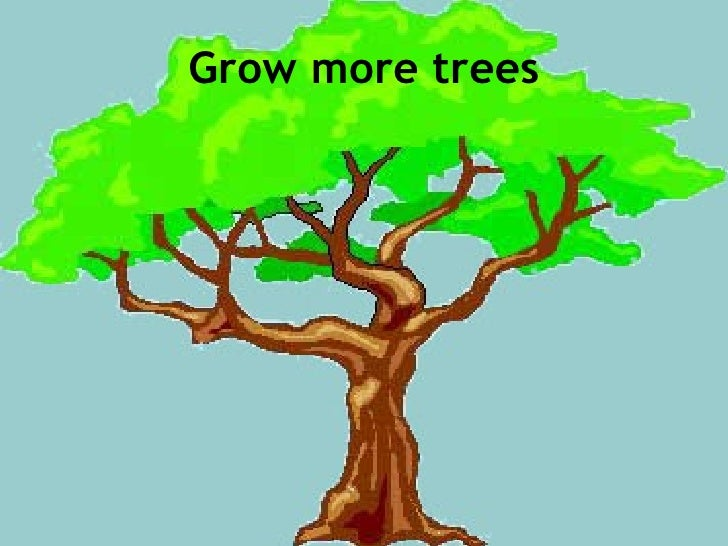 grow more trees pictures