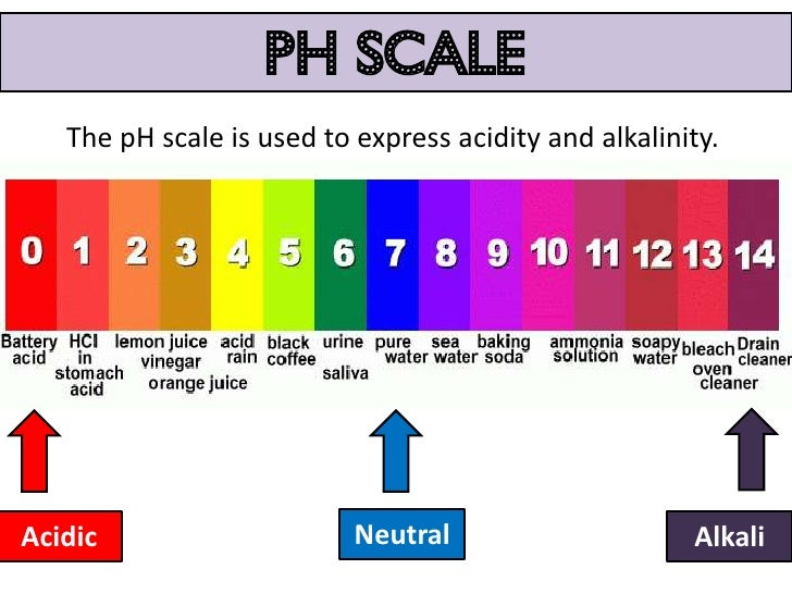 a lab on the use of indicators to find the ph value of a substance Cabbage chemistry--finding  which you will use to test the ph of  there are other vegetables and fruits that can be used to make ph indicators as well.