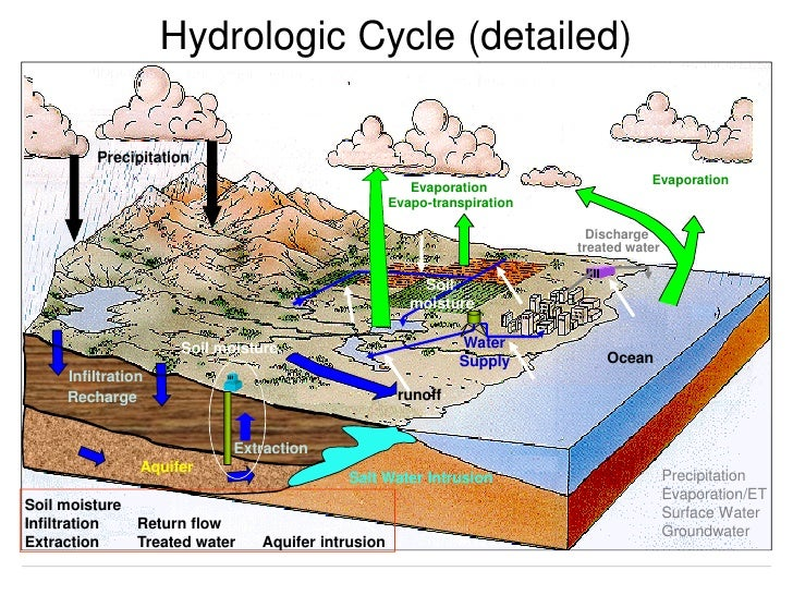 water cycle evaporation drives it