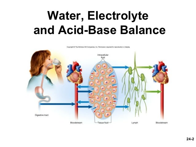 fluid electrolyte and acid base balance critical thinking question anatomy and physiology critical t Anatomy, physiology and disease for health chapter 6 concepts of fluid, electrolyte, and acid base balance critical thinking questions are.