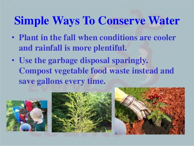 Simple Ways To Conserve Water• Plant in the fall when conditions are coolerand rainfall is more plentiful.• Use the garbag...
