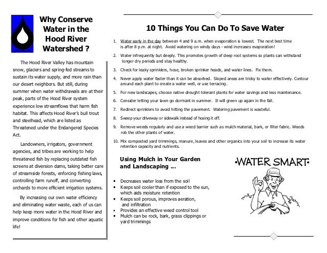 Why Conserve                 Water in the                                      10 Things You Can Do To Save Water         ...