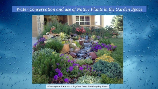 Water Conservation and use of Native Plants in the Garden Space Picture from Pinterest – Explore Texas Landscaping Ideas