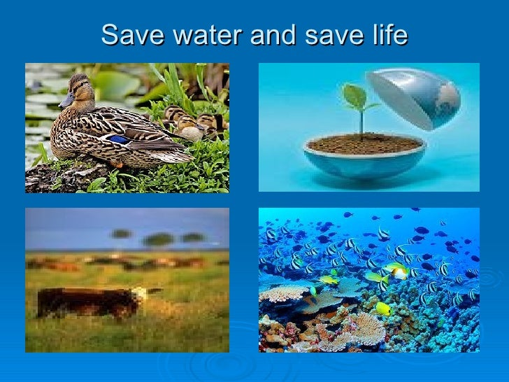 water conservation management ways for water conservation 16