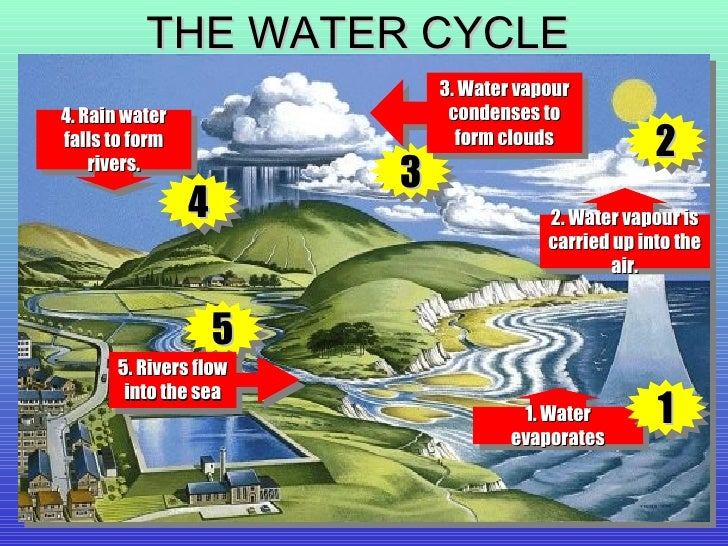 Water Cycle 1 WATER 2