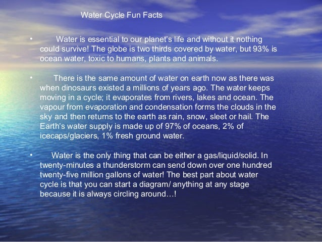 Water Cycle Fun Factso