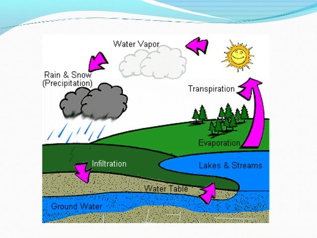 steps of the water cycle The four steps of the water cycle are evaporation, condensation, precipitation, and runoff evaporation, the first step is where water rises from a.