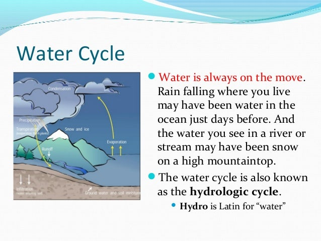 Water cycle - All the steps to the water cycle with a video at the end