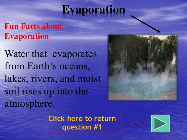 Evaporation Fun Facts About Water