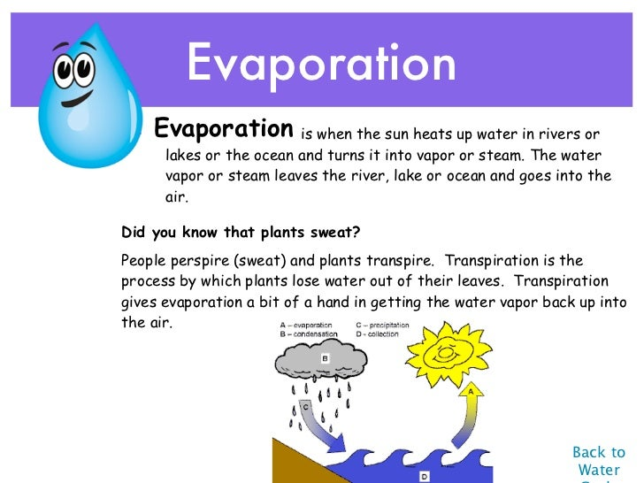 facts about evaporation